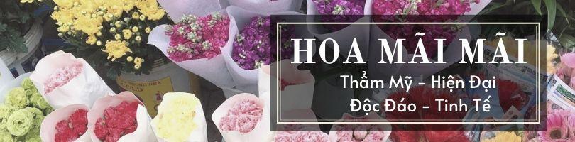 Top 7 Shop Hoa Tươi Quận Thanh Khê Đà Nẵng