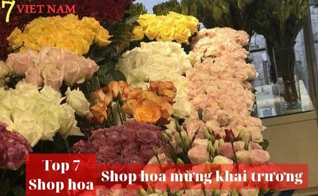Top 7 Shop Hoa Khai Trương Huế