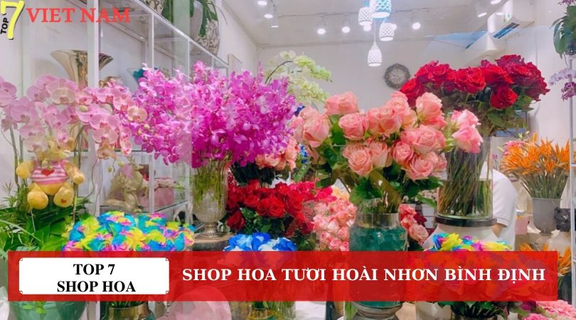 Top 7 Shop Hoa Tươi Hoài Nhơn Bình Định