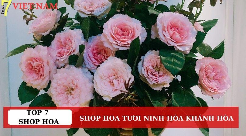 Top 7 Shop Hoa Tươi Thị Xã Ninh Hòa Khánh Hòa